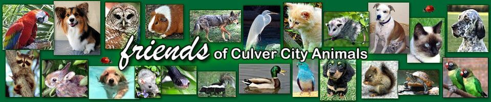 Friends of Culver City Animals